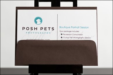 Gift Certifcate Posh Pets Photograhy