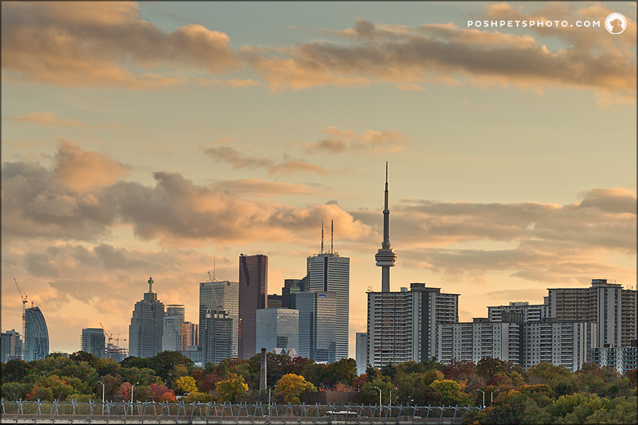 Toronto skyline in Autumn