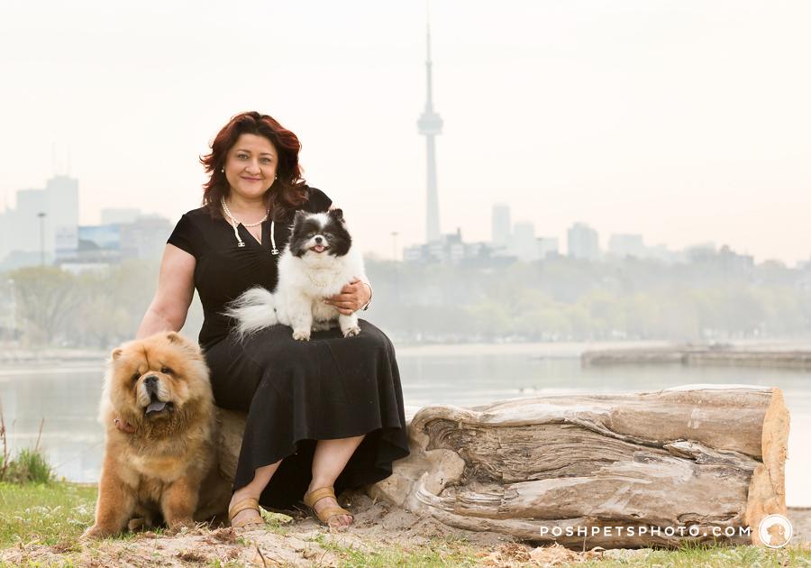 dog family portrait with Toronto skyline