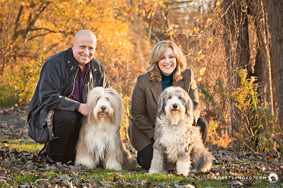 dog family in fall colours in ontario