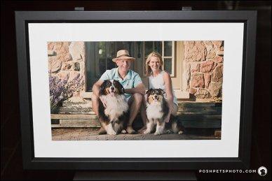 Toronto family and dog photographer