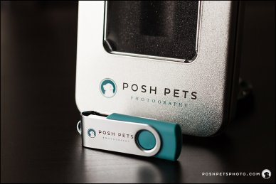Digital Negatives Posh Pets Photograhy