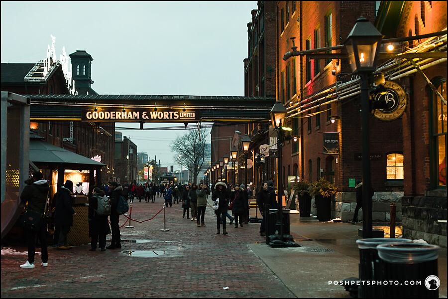 Main Street of Distillery District