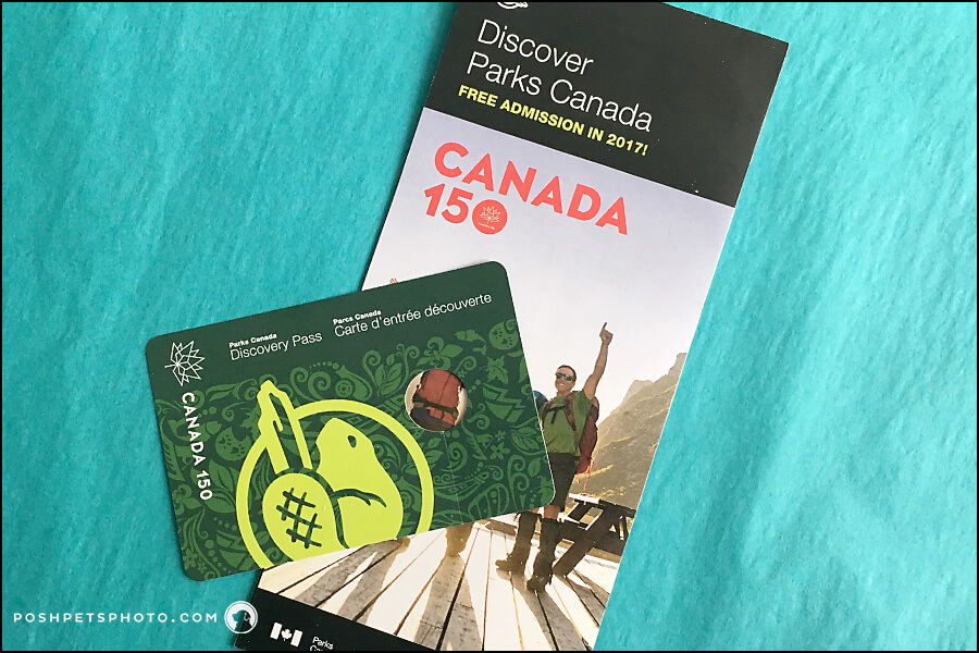 Discovery Pass Canada - Travel With Dog