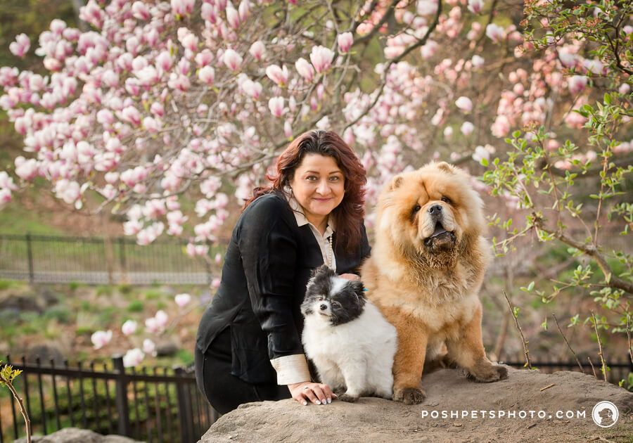 Happy customer reviews of Posh Pets Photography