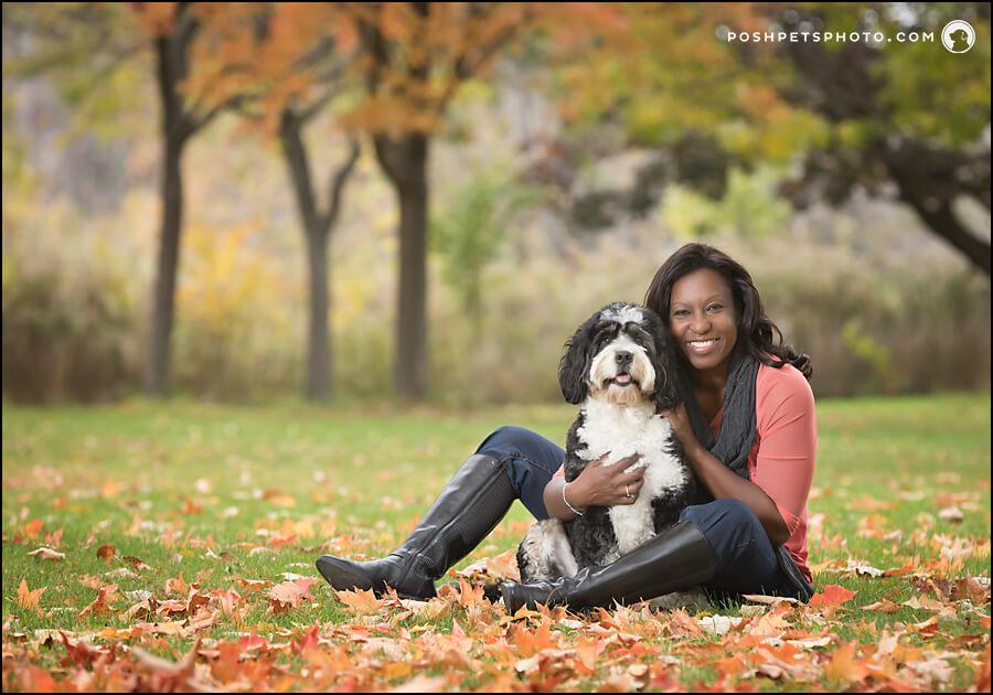 Bernedoodle dog Toronto dog photography reviews