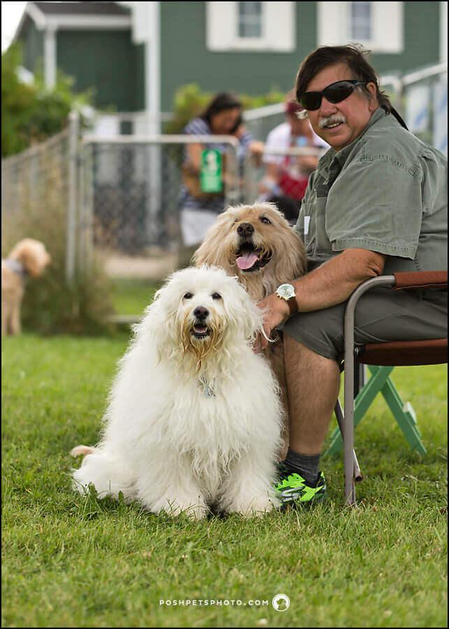 Toronto commercial dog photographer