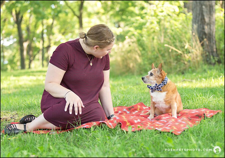 dog picnic in Niagara-on-the-Lake