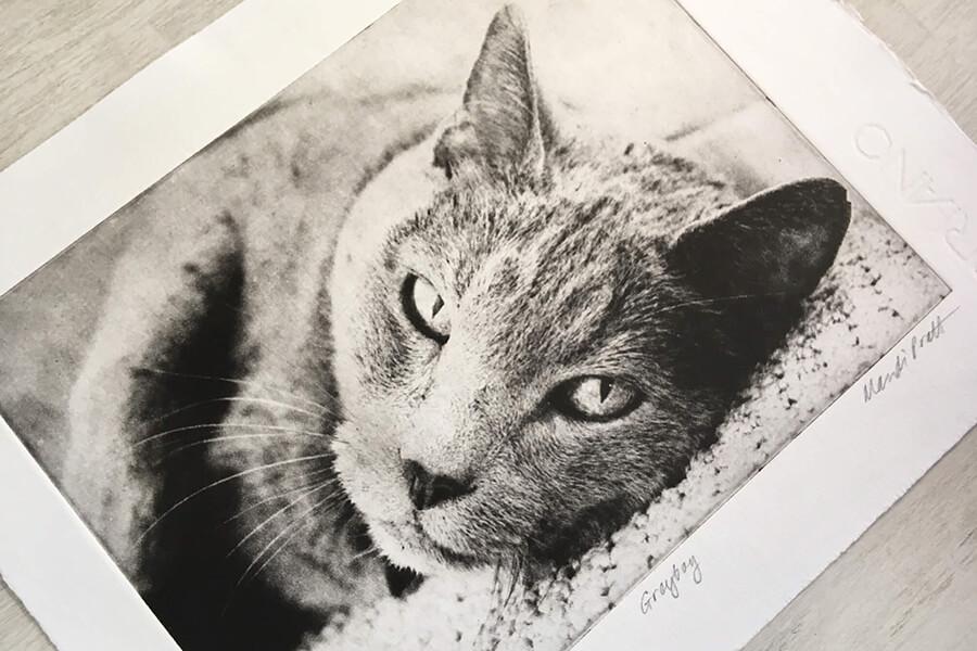 Pet Etchings by Greyboy Pet Prints