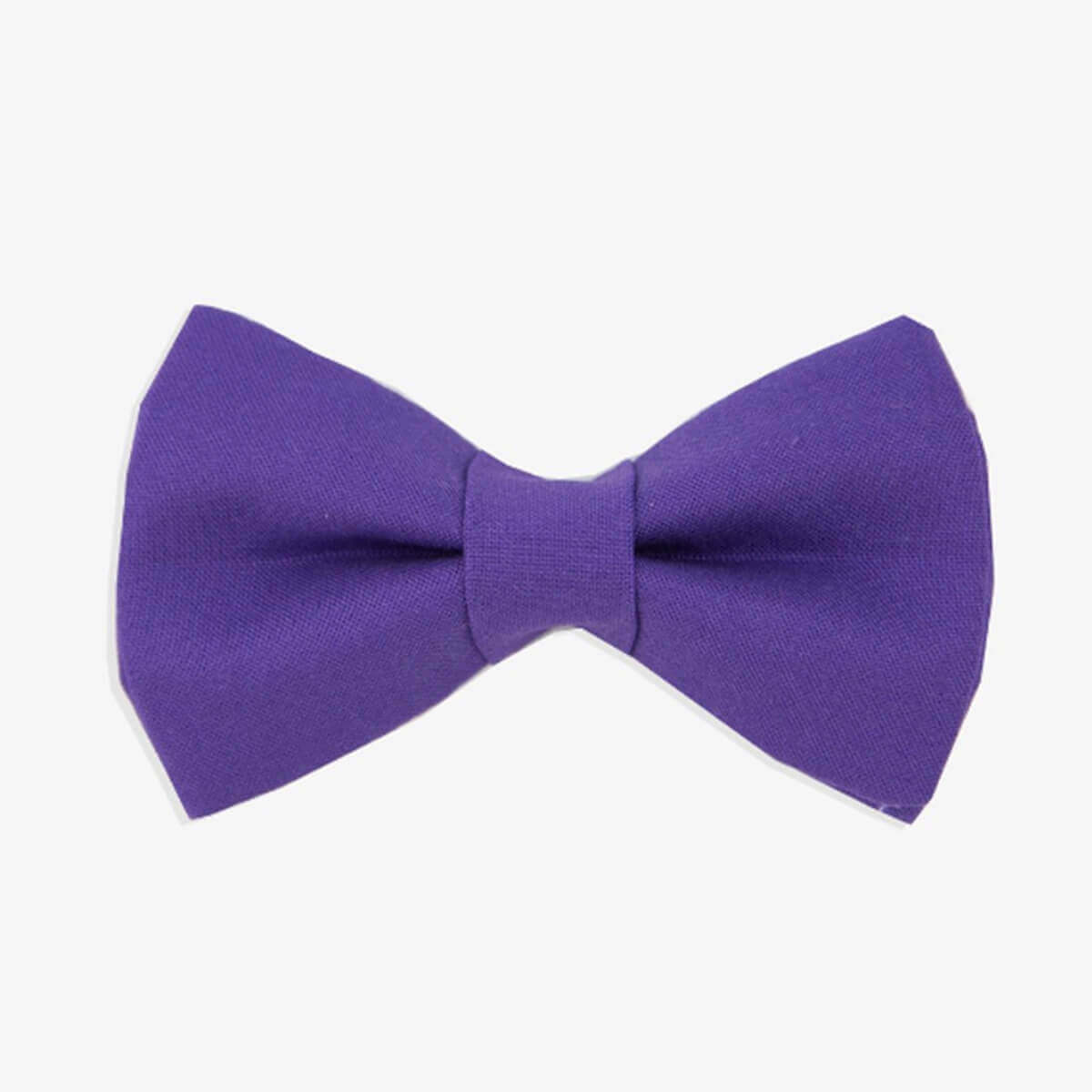 Ultra Violet Pantone dog and cat bowtie