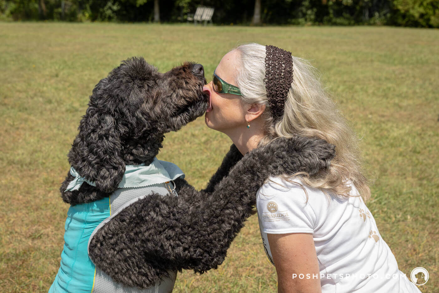 dog kisses woman