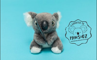 Paws for Oz | Fundraiser Pet Sessions