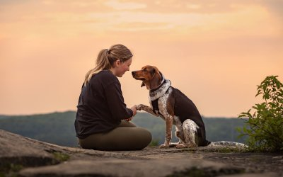 3 Local Ways to Celebrate Fall With Your Dog