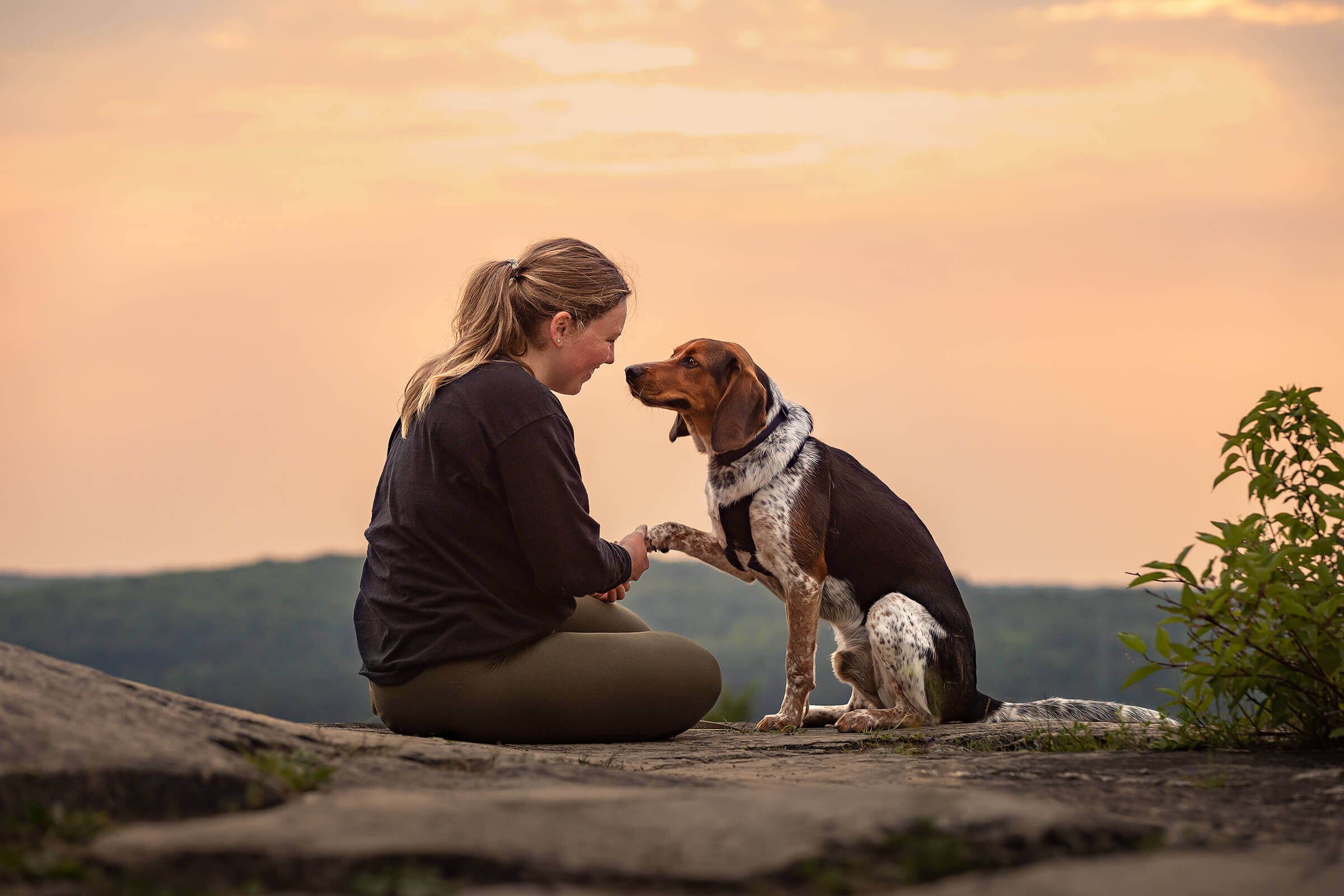 girl and dog at lookout at Kelso Conservation Area