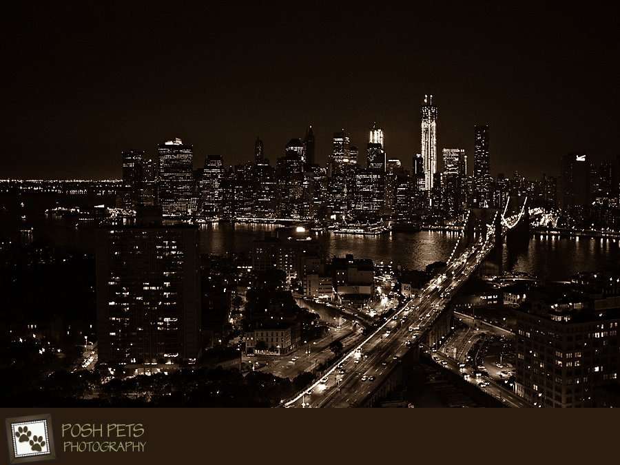 Project 52 – Personal Work | New York Photography