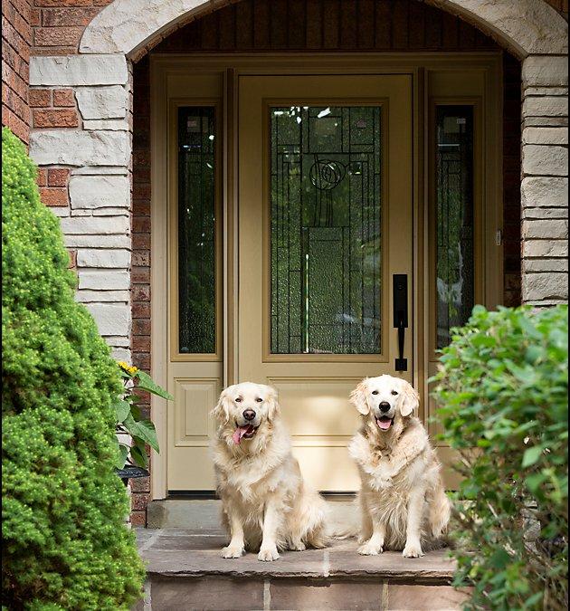 Jake & Mack – Two Golden Boys in Toronto